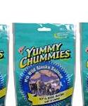Arctic Paws Yummy Chummies Hip and Joint Soft N Chewy 4-oz {bin-2}