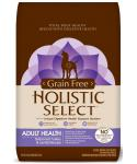 Holistic Select Natural Grain Free Turkey And Lentils Dry Dog Food